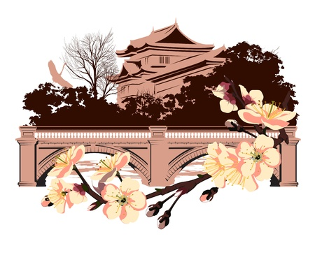 cherry blossom on a background of Japanese house Vector