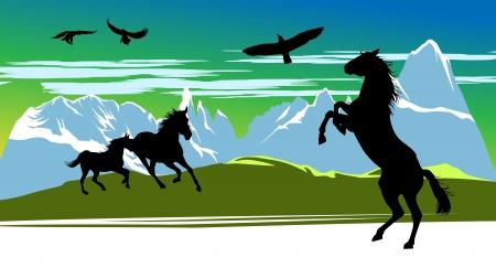 wild grass: Correr caballos negros y los p�jaros en el fondo de las monta�as