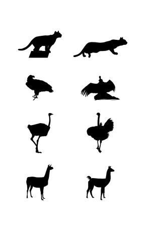 pounce: Black images and silhouettes of a South America wild animals on a white background Illustration