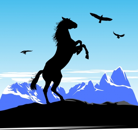 horse racing: Horse stand on its hind legs on the snow mountains and blue sky background
