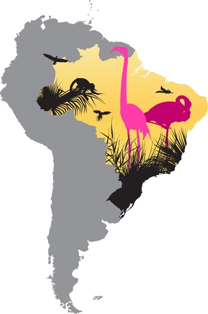 Map picture whit pink flamingos in the jungle Vector