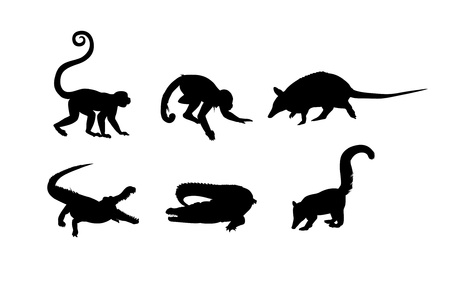 africa crocodile: Black silhouettes of monkey, alligator and ant-eater on the white background