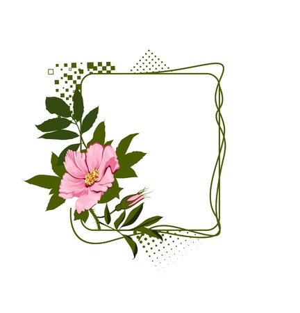 lyrical: The green frame with the wild pink roses