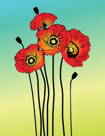 poppy field: Vector flores de amapola de primavera