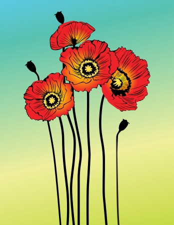 Vector poppy spring flowers Vector