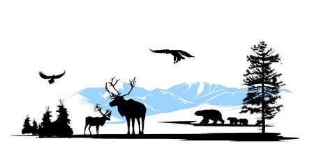 elk horn: Woods, los animales en el bosque de pinos y monta�as de nieve de fondo