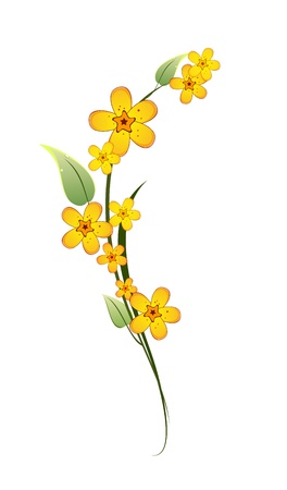 yellow flower on a stem with green leaves on white background