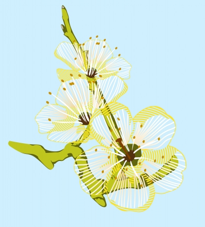 transparently: background of a yellow flower on a green branch Illustration