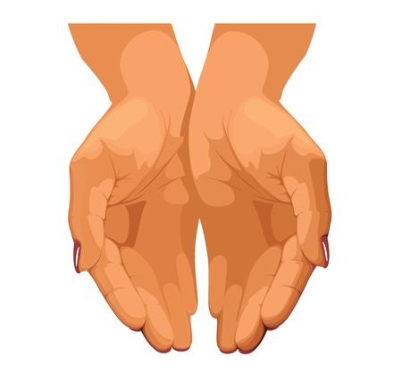 generosit�: Mani delle donne s sono collegati tra loro Vettoriali