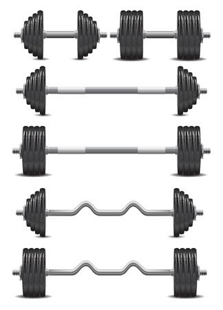 gym equipment: cromato manubri con un peso di nero su sfondo bianco