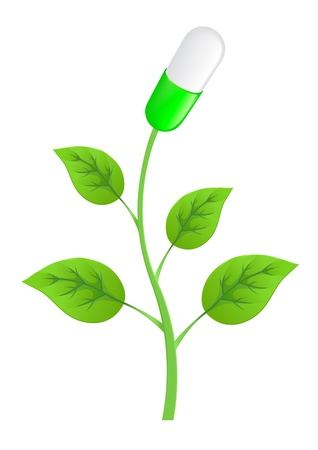 generic drugs: plant with leaves and pills on a white background Illustration