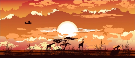 The plane flies at dusk over the African savanna Vector