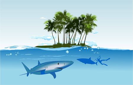 Underwater hunters sharks near the island daylight Stock Vector - 13922202