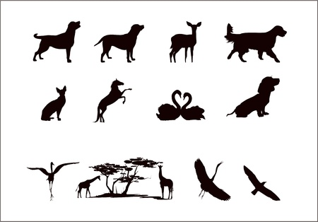 silhouettes of wild animals and pets in black and white colors Vector