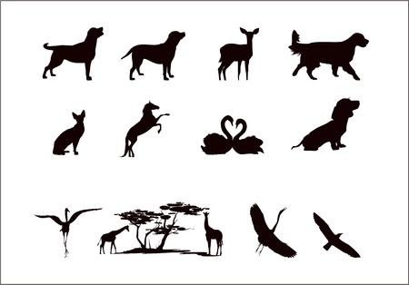 silhouettes d'animaux sauvages et les animaux domestiques dans les couleurs noir et blanc