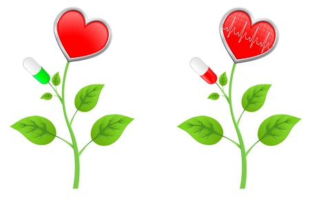 bosom: green stem with leaves with a red heart and a diagram