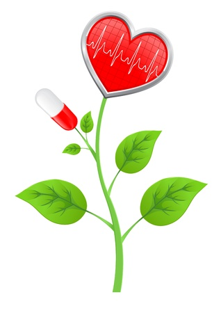 burgeon: green stem with leaves, pills, and a heart-shaped diagram Illustration