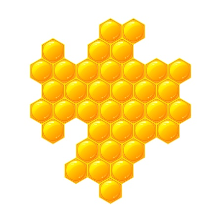 wax glossy: Honeycomb, isolated on the white Illustration