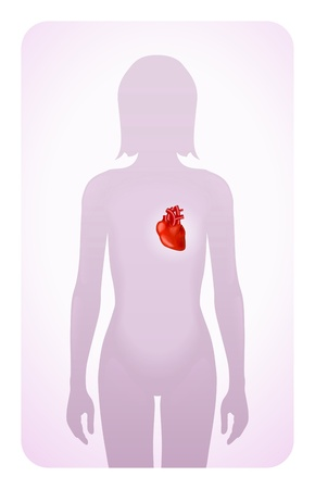 heart highlighted on the silhouette of a woman Vector