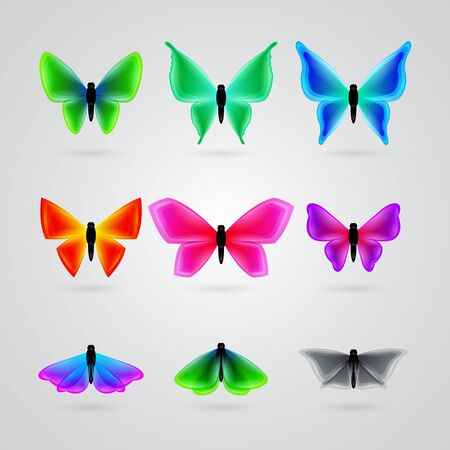 purple butterfly: set of different color butterfly Illustration