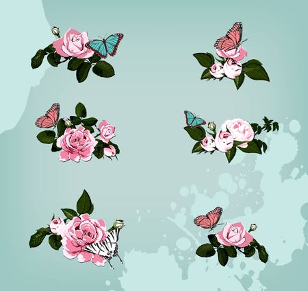rosa: collection of roses with butterflies