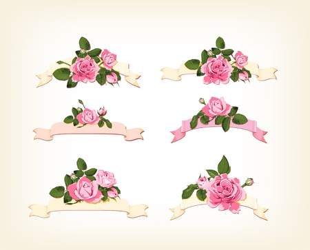 rosa: set of a beautiful colored roses  Illustration