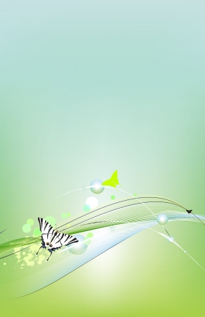 green butterfly: Spring card  background Illustration