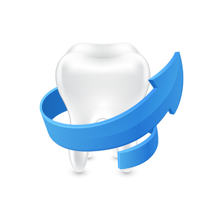 Isolated all around protected human teeth on white