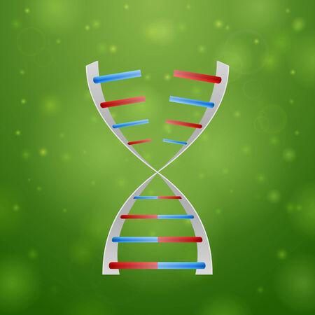 rna: DNA and RNA on green background Illustration