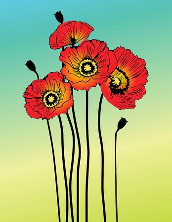 greenfield: Vector poppy spring flowers