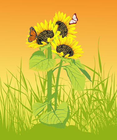 artificial flowers: Sunflower in the grass with butterflyl on the yellow background