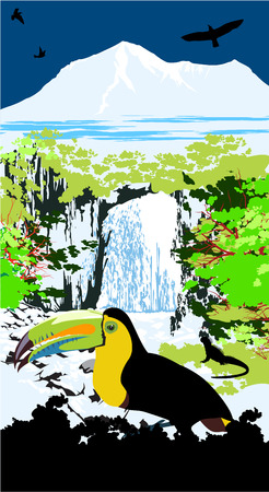 Variegated tucanucu parrot on the waterfall and jungle background Vector