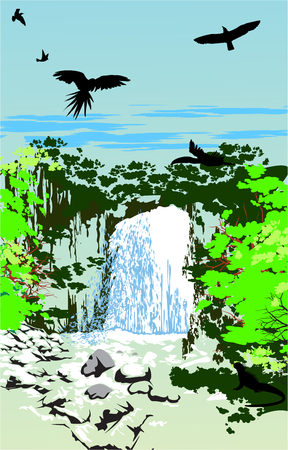 Waterfall whit the sky birds in the jungle Vector