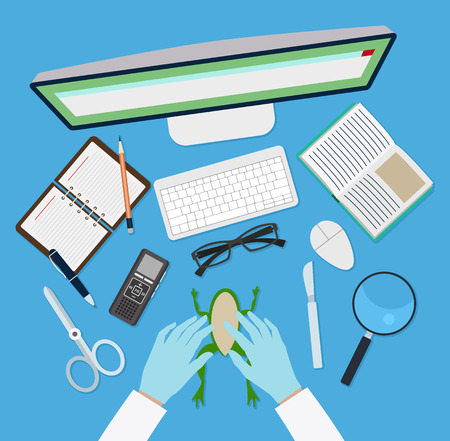 office stuff: Doctor vector workplace with blue background