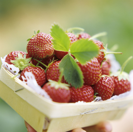 x country: A Carton of Strawberries