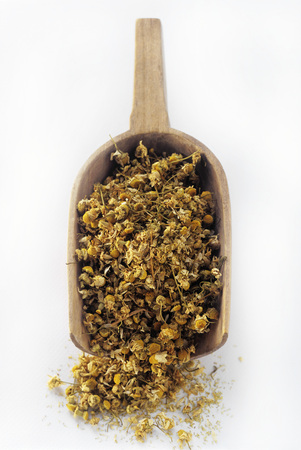 matricaria recutita: Dried Chamomile Blossoms in Wooden Scoop LANG_EVOIMAGES
