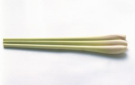 lemon grass: Lemon Grass