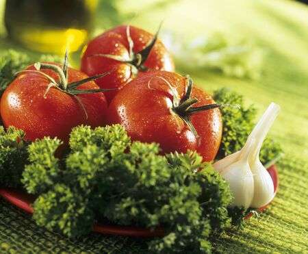 petroselinum sativum: Salad ingredients: tomatoes. garlic. parsley LANG_EVOIMAGES