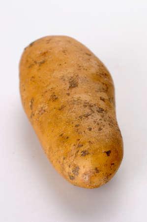 belle: A Belle de Fontenay potato