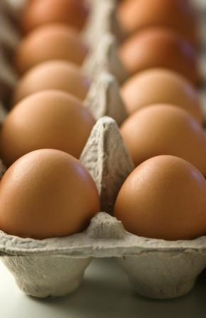 brownness: Fresh, brown eggs in an egg box