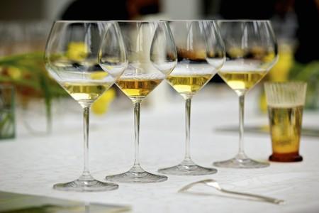 degustation: Wine glasses set up for degustation
