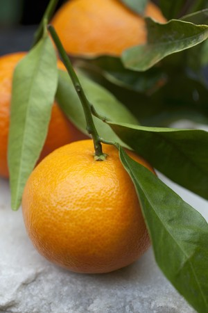 mandarins: Mandarins with leaves (close-up)