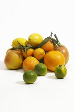 감귤류의 과일: 흰색 배경에 대해 다양한 감귤류 LANG_EVOIMAGES