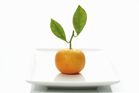 clementine: A clementine with leaves LANG_EVOIMAGES