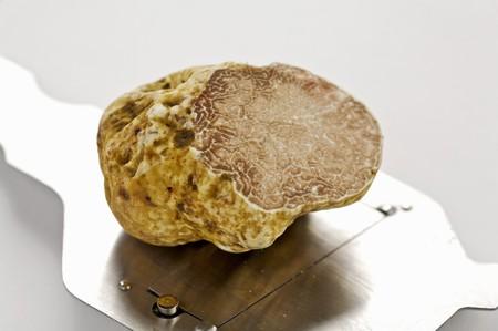 truffe blanche: Truffe blanche champignon et une trancheuse de truffe