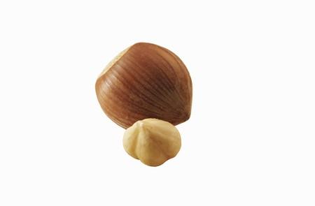 shelled: Unshelled and shelled hazelnuts