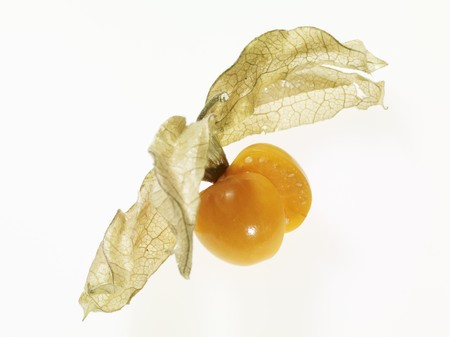 coverings: Physalis with husks LANG_EVOIMAGES