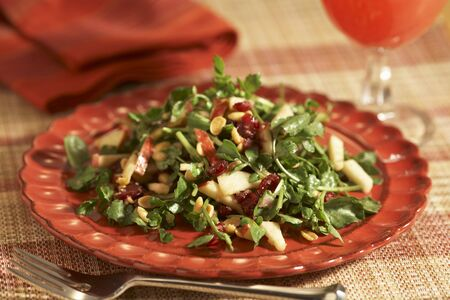 water cress: Watercress Salad with Apples, Cranberries and Peanuts; On a Plate; Fork LANG_EVOIMAGES