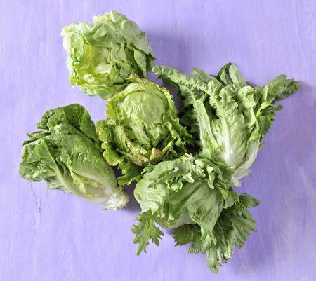 lettuces: Two different lettuces LANG_EVOIMAGES