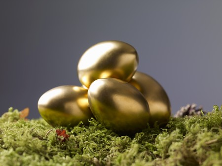 mosses: Golden Easter eggs on moss